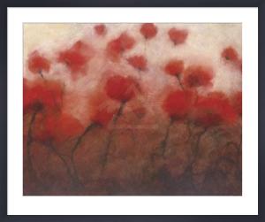 Poppy Luck by David E. Gordon