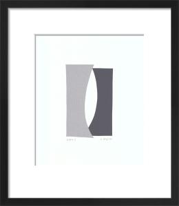 Echo I (serigraph) by Denise Duplock