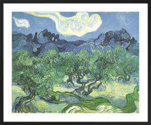 The Olive Trees, 1889 by Vincent Van Gogh