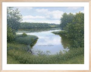 Summer Inlet by Tim Arzt