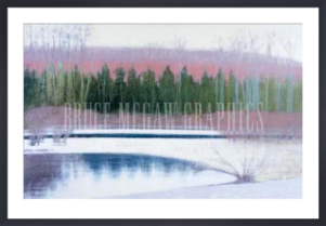 Cedars and Brook - Winter by Judy Friday