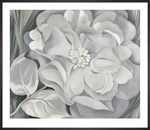 The White Calico Flower, 1931 by Georgia O'Keeffe