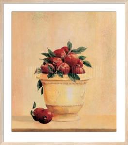 Pomegranates by Hampton Hall