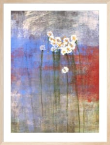 Marguerites II by Maeve Harris