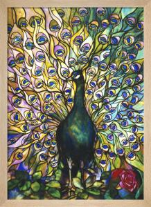 Peacock Window by Tiffany Studios
