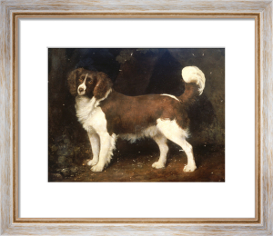 A Spaniel In A Landscape, 1784 by George Stubbs