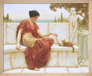 The Favourite, 1901 by John William Godward