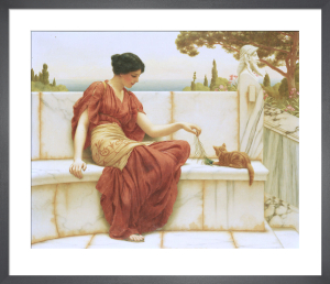 The Favourite, 1901 by John William Godward
