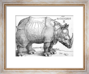 The Rhinoceros, 1515 by Albrecht Dürer
