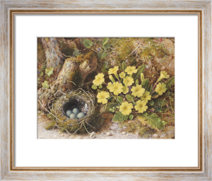 Still Life With A Bird's Nest And Primroses On A Mossy Bank by William B. Hough