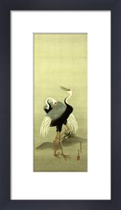 Cranes by Suzuki Motonaga Kiitsu