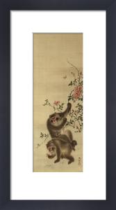 Monkeys And Roses by Mori Sosen