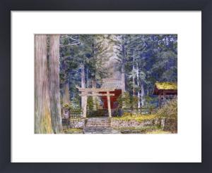 Stone Road To A Shrine by Ioki Bunsai