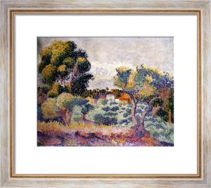 Eucalyptus And Olive Grove by Henri-Edmond Cross