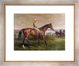 'Suspender', A Bay Race Horse With G by Edmund Havell