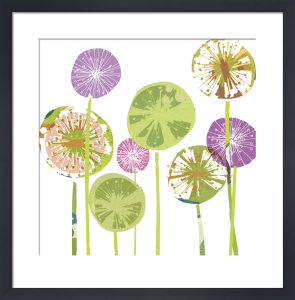 Allium Spheres by Louise Cunningham