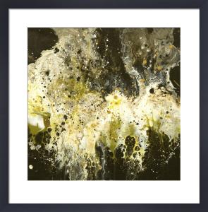 Lush by Elizabeth O'Connor