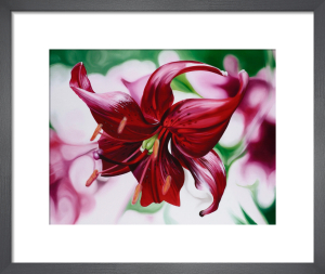 Dancing Lily by James Knowles
