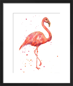 Flamingo by Alison Fennell