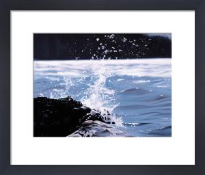 Splash by James Knowles
