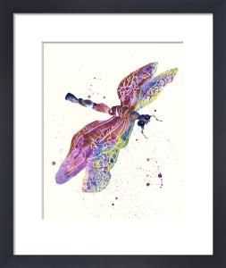 Dragonfly Watercolour - Gossamer Dreams by Alison Fennell