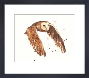 Owl Journeyman by Alison Fennell