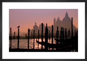 Venice At Dawn by Wayne Williams