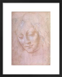 Head of a Woman by Leonardo da Vinci