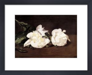 Branch of White Peonies and Secateurs 1864 by Edouard Manet