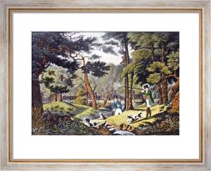 Pheasant (Restrike Etching) by Robert Havell
