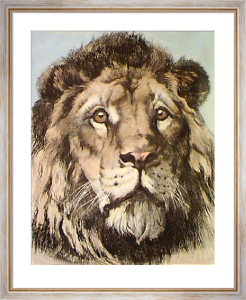 Lions Head (Restrike Etching) by Herbert Thomas Dicksee