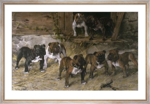 Bulldogs of the 20th Century (Restrike Etching) by Arthur Wardle