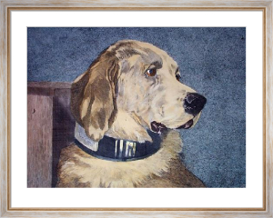 Odin (Retriever) (Restrike Etching) by Sir Edwin Henry Landseer