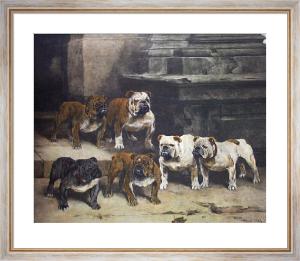 Modern Bulldogs (Restrike Etching) by Arthur Wardle