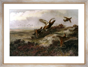 Put up by the Beaters (Restrike Etching) by Archibald Thorburn