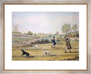 Partridge (Restrike Etching) by James Pollard