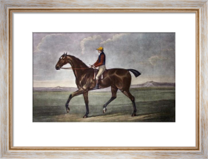 Diamond (Restrike Etching) by George Stubbs
