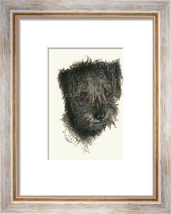 Wolfhounds Head (Restrike Etching) by Harber