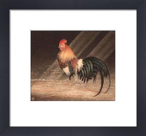 Cockerel (Restrike Etching) by Alex Mackay