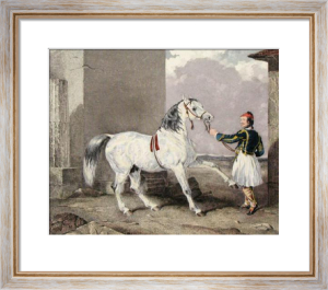 Greek & White Arab Horse (Restrike Etching) by Abraham Cooper
