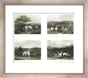 Sporting Dogs (4 on Plate) (Restrike Etching) by William Joseph Shayer