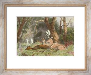Fallow Deer (Restrike Etching) by Newton Fielding