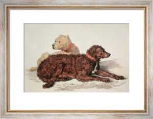 Old Brutus (Dogs) (Restrike Etching) by Sir Edwin Henry Landseer