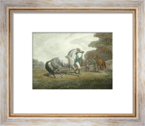 The Racing Stallion (Restrike Etching) by Samuel Howitt