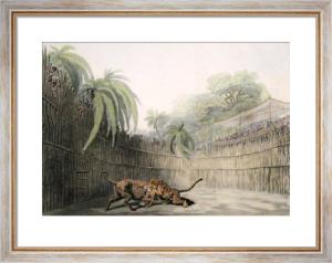 Exhibition of a Battle (Restrike Etching) by Samuel Howitt