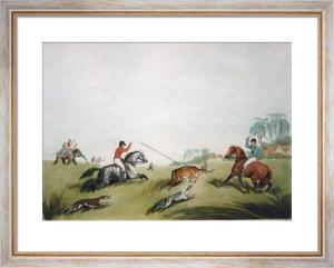 Hog deer at bay (Restrike Etching) by Samuel Howitt