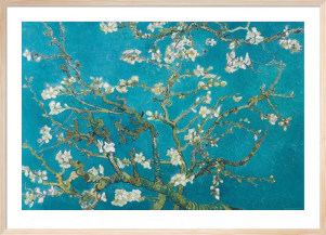 Almond Blossom, San Remy 1890 by Vincent Van Gogh