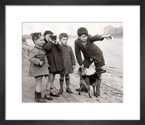Boys on river bank, 1948 by Mirrorpix