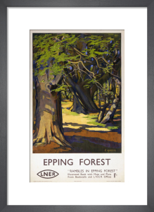 Rambles in Epping Forest by National Railway Museum