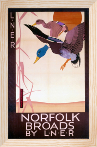 Norfolk Broads - Ducks by National Railway Museum